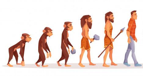 進化論でよく目にするイラスト