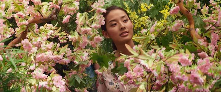 おすすめのキリスト教映画「アメイジング・ジャーニー神の小屋より」のイメージ