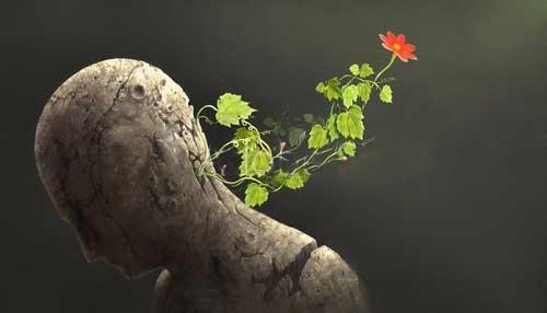 自己肯定感について理解することで徐々に成長するイメージ